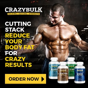 Best steroid cycles for bodybuilders