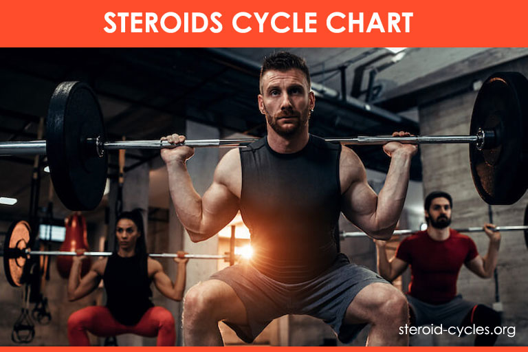 Steroids Cycle Chart: Best Legal Steroids Cycle and Stacks [2020]